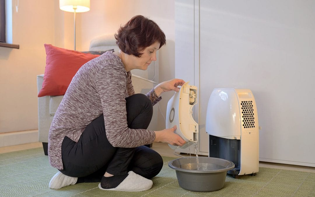 improve energy efficiency with a dehumidifier